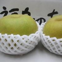 福島の梨 幸水