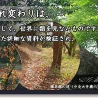 仙境異聞~勝五郎再生記2