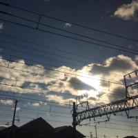 写真日記4