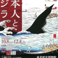 日本人とクジラ展