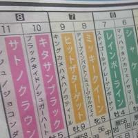 宝塚記念のサインは、北、金、ロケット、そして「そっちかい!」