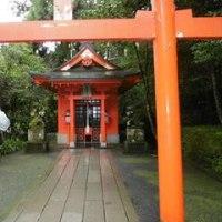 箱根路を行く(箱根神社)