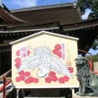 関西(大阪) 梅まつり・梅の名所