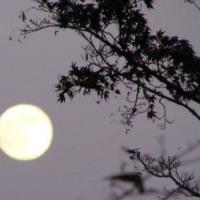 千曲を照らす満月。