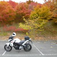 秋ツーリングその2