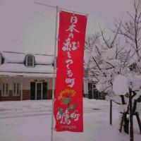 白鷹は日本の紅をつくる町