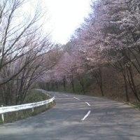 日記(5/5日)