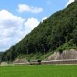 JR姫新線の夏(兵庫県)