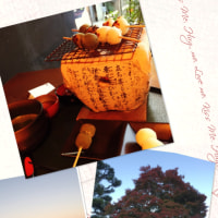 秋の京都🍁 ⑴