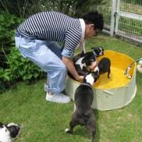 父、母と遊ぶ 新しいお友達