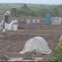 貸し農園も本格的な活動期に入りました