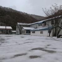 学校も白く