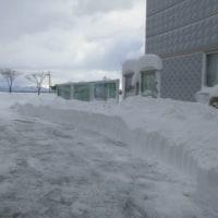 今日も除雪活動