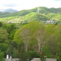 萌え木色の季節