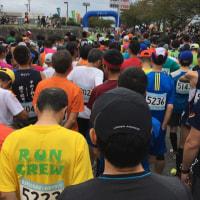 2016 あざいお市マラソン大会