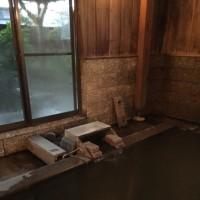 川渡温泉 こはく湯の宿 中鉢  NO416