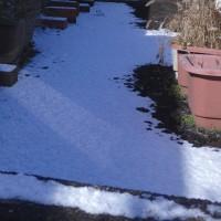 雪だーっ\(^o^)/