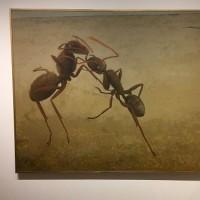 奥田良悦展、蟻の愛は人間の愛より深い・・ギャラリー惣