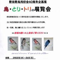 野田の興風会館での「鳥・とり・トリの展覧会」