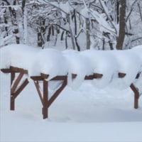 除雪機が壊れた