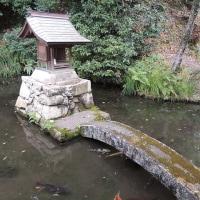 洞雲寺の鎮守-厳島社