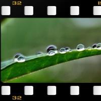雨後の光(2)