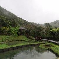 雨の奄美大島