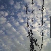空のきびしさ