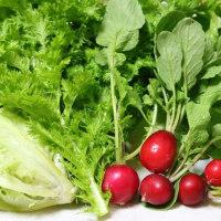 「野菜ソムリエとしてブログを復活させます」宣言