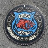 大和郡山市のマンホール(青)