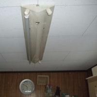 プレハブの天井を修理。
