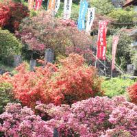 五大尊~高麗神社へ
