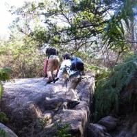 金勝(コンゼ)アルプス ~大津市、草津市、栗東市にまたがる変化に富んだハイキングコース~