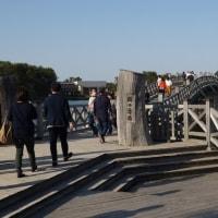 青森旅行Ⅵ~鶴の舞橋1