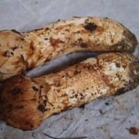 秋の味覚♪ 松茸とカボチャとサツマイモ(^^)/