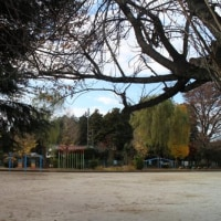 冬の薄日が差す、誰もいない休日の校庭