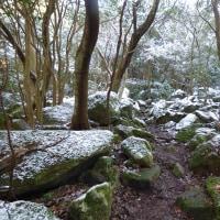 (通称)難所ヶ滝の氷結(福岡県)