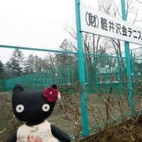 秘書にゃんこ*軽井沢 1