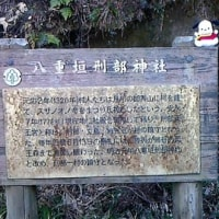 関東ふれあいの道(千葉11)ひとりウォーク
