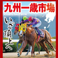 【九州1歳市場2016(Kyusyu Sale、Yearlings)】~結果概要(最高額馬はストラヴィンスキー産駒)