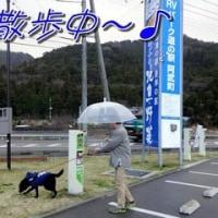 道の駅阿武町に「 お泊まり 」~♪
