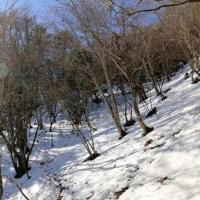 櫛形山(2,052m)山行レポート