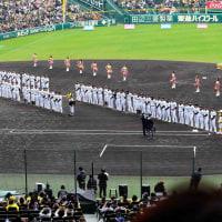 阪神タイガースの来季スローガンは 「挑む」 です!!