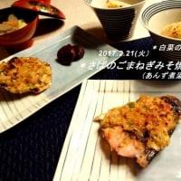 〇ぴーのまねまねクッキング  305(さば料理)