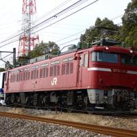 2017/3/28 E531系配給・115系T1041編成OM出場