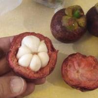 中国で食べたい果物