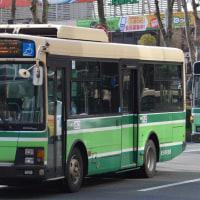 秋田 519