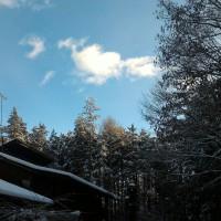 雪がふりました(^o^)