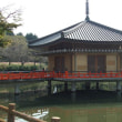 安倍文殊院(6)金閣浮御堂
