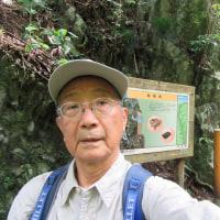 高尾山10月21日(金)